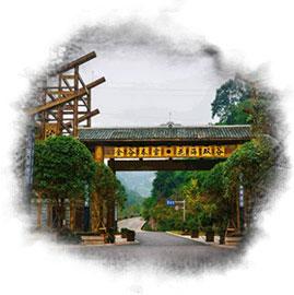 丰收大地乡村振兴规划现代农业园