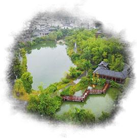 三角梅乡村振兴规划农业公园