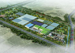 现代农业园 · 宁夏省银川市永宁现代农业庄园:一、二、三产业融合发展典范