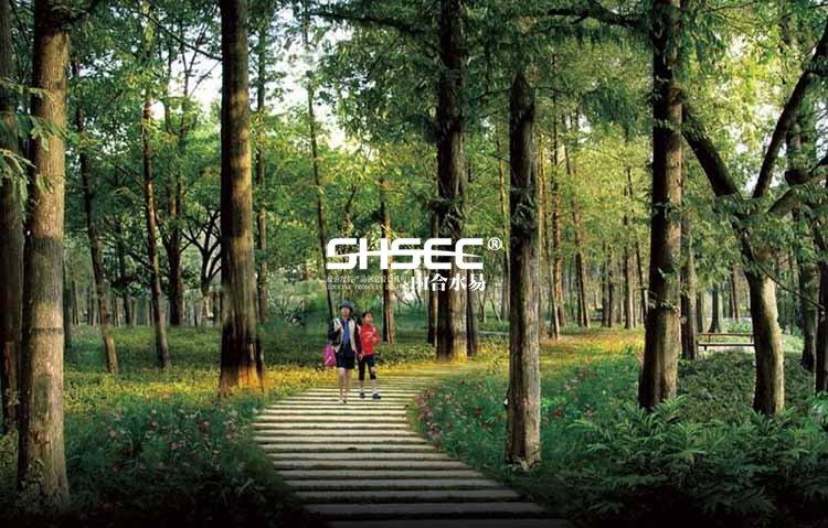 在森林中散步是养生的基本条件,所以森林浴也叫林间步行运动,是一种