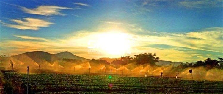 休闲农业与乡村caopron|手机官网规划
