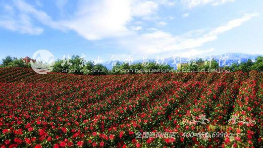 三亚玫瑰谷风景图片