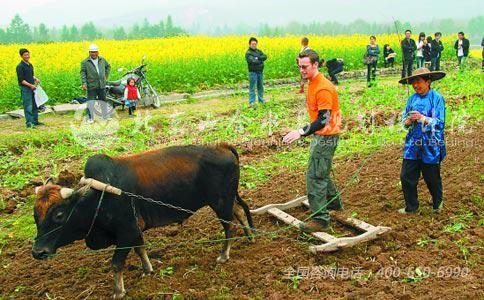 体验经济助推农业升级-旅游规划