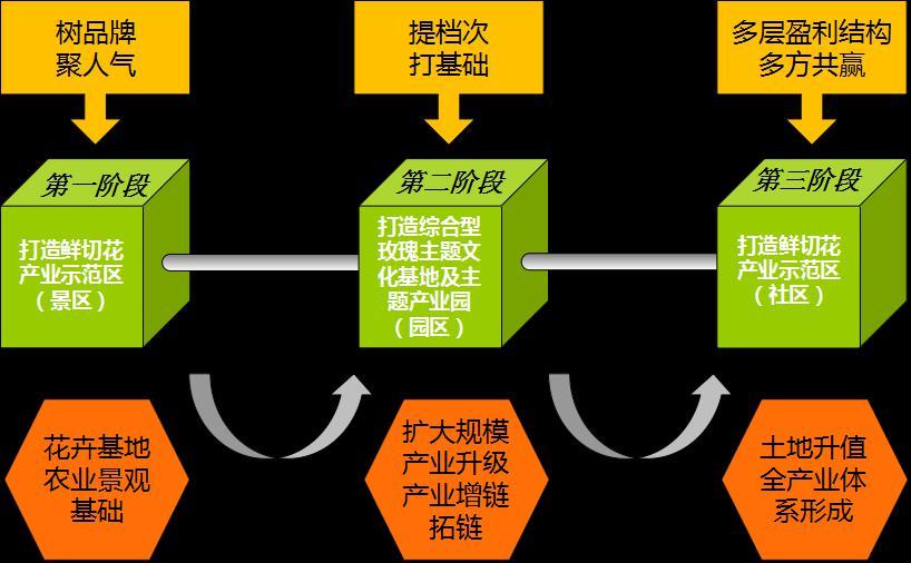 4 项目开发策略示意图