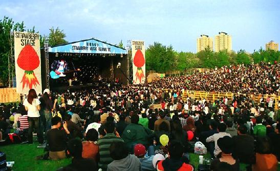 农业节庆活动_农业节庆活动一场流行的文化盛宴黄岩新闻网