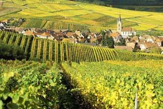 酒庄专家解读:法国葡萄酒caopron|手机官网的成功经验和借鉴!