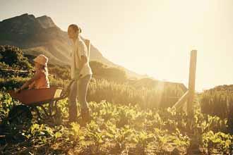 亲子农业遇上互联网思维