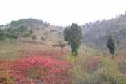 山合水易受邀赴山东省沂南县某旅游规划项目考察