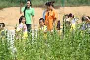 怎样打造一家儿童亲子主题农园?