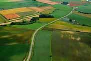 农业农村部等6部门:稳妥开展土地经营权入股试点工作 促进乡村振兴