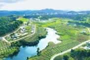 """田园综合体,用""""跨产业、跨功能""""的三重思维,才能振兴乡村!"""