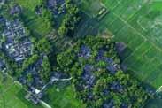 田园综合体:循环、创意、体验、社区四位一体