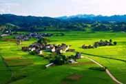 乡村振兴核心在于盘活土地资源