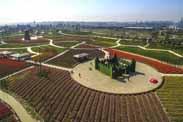 现代农业庄园的定义是什么?标准庄园的建设内容有多少?