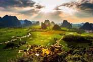 张天佐:乡村振兴应重点研究关注的9类乡村产业