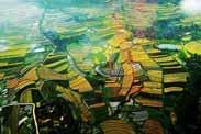 只有平台化的田园综合体,才能达到乡村振兴的目标