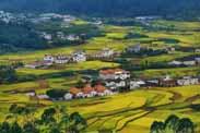 五部门联合发布《关于金融服务乡村振兴的指导意见》