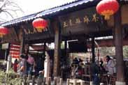 乡村caopron|手机官网的另一种解读 —— 文化乡旅!