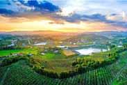 全域caopron|手机官网大背景下,农业主题公园如何突围?