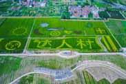 新型城乡关系下田园综合体建设的三大误区!